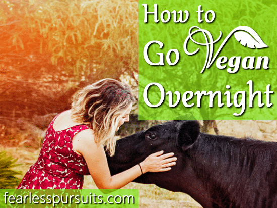how to go vegan overnight, go vegan overnight, how to go vegan the right way, how to go vegan in 24 hours